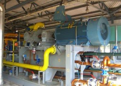 Fuel Gas Booster to GE Frame 6 Gas Turbine for Pioneer Power Pvt. Ltd., at Ramanathapuram, India